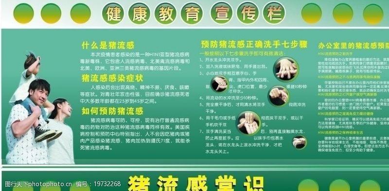 流感常识猪流感宣传图片