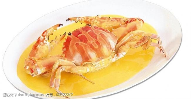 海鲜图片免费下载美味海鲜图片