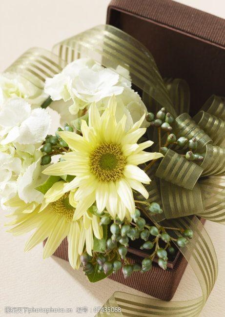 风景生活旅游餐饮鲜花花朵菊花