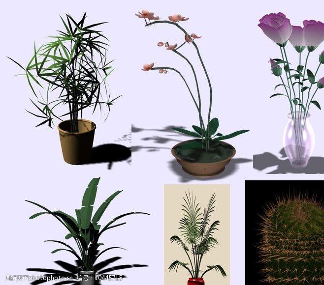 44个花草模型图片