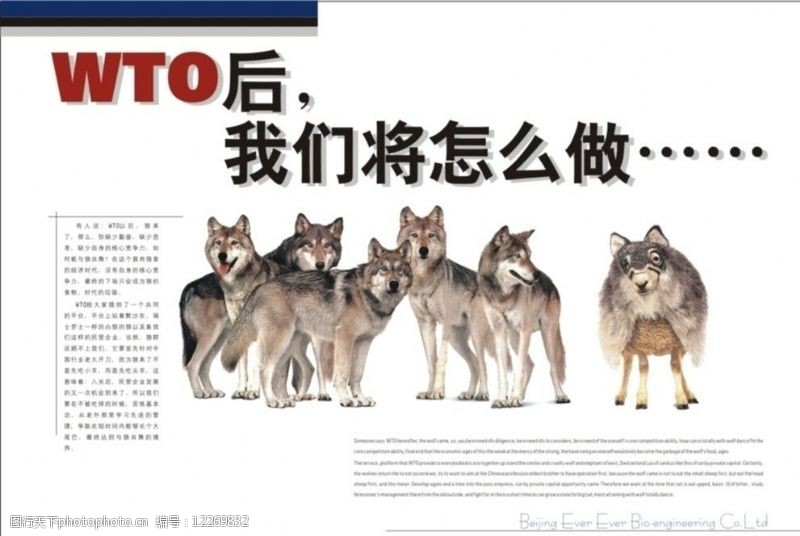 wto企业文化画册WTO图片